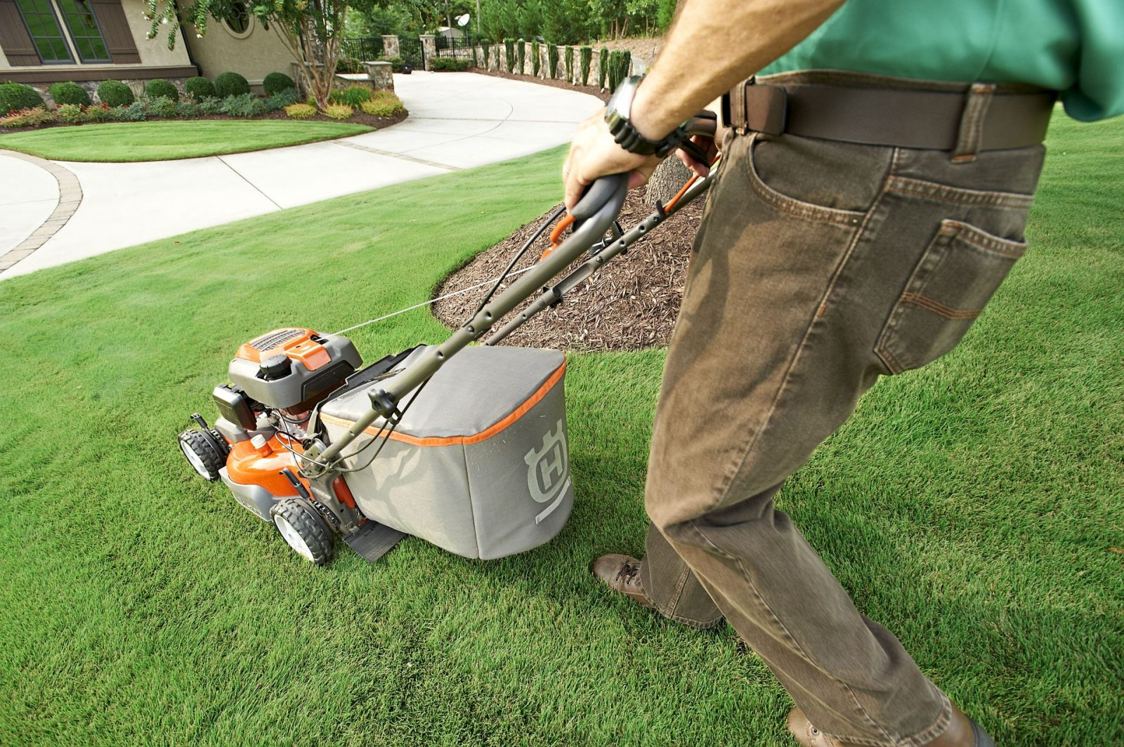 buying guide of push mower